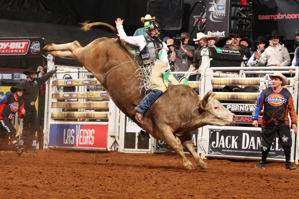 Backgrounds-bull-riding-bullrider-rodeo-western-PIC-MCH043371-1024x683 Pbr Wallpaper Puter 36+