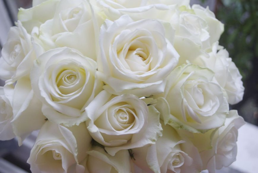 Beautiful-White-Rose-Flowers-Pictures-PIC-MCH045246 White Wedding Wallpaper 19+