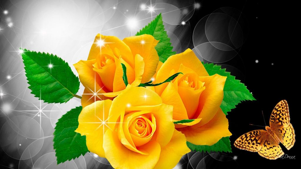 free-download-yellow-roses-wallpaper-x-for-iphone-s-PIC-MCH032122-1024x576 Yellow Rose Wallpaper 22+