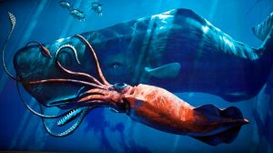 Giant Squid Wallpaper 34+