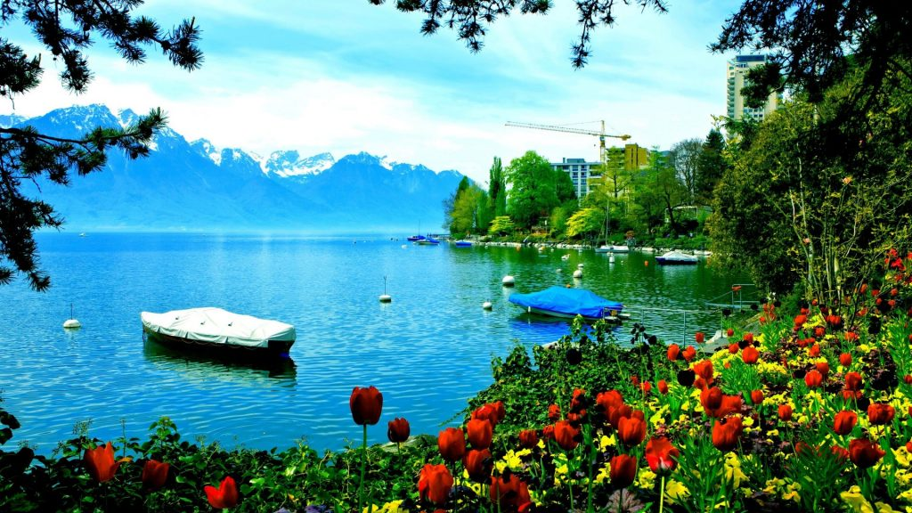 lakes-montreux-lakeside-nature-tulips-switzerland-blossoms-lake-mountain-tahoe-hd-wallpapers-x-PIC-MCH081093-1024x576 Switzerland Wallpaper Full Hd 44+