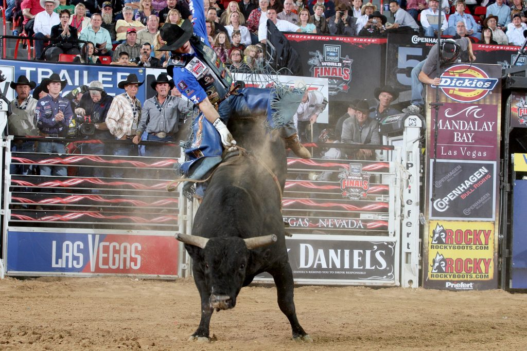 other-PIC-MCH092716-1024x683 Pbr Bull Wallpaper 19+