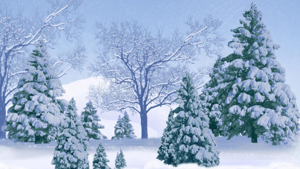 snowy-trees-background-PIC-MCH0102800-1024x576 Pine Tree Wallpaper Background 29+