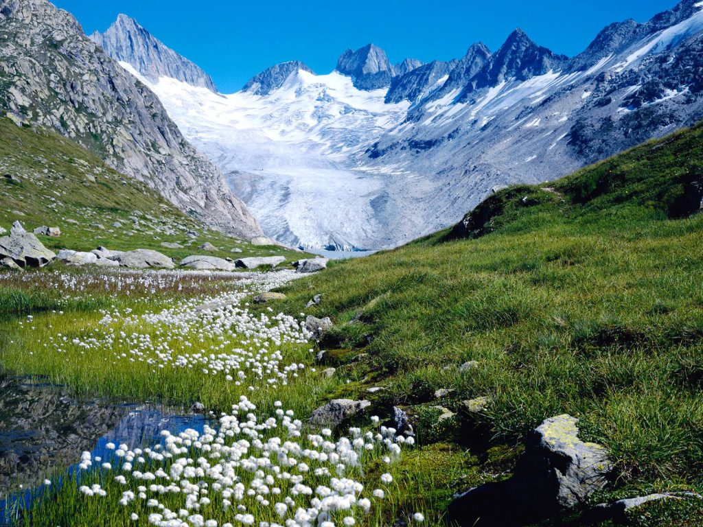 switzerland-nature-cool-nature-wallpapers-amazing-landscape-organic-plants-nature-wallpapers-for-wi-PIC-MCH0105332-1024x768 Switzerland Wallpaper For Desktop 30+