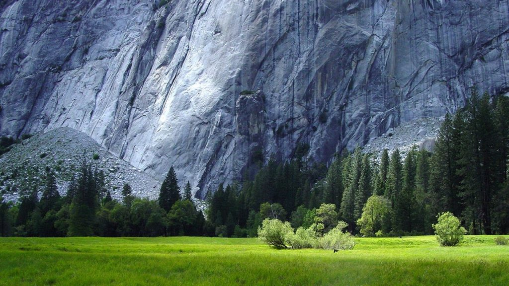 ws-Yosemite-National-Park-Scenery-x-PIC-MCH0119763-1024x576 How To Set Wallpaper On Mac Yosemite 29+