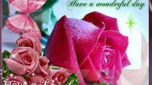 Good Afternoon Beautiful Wallpapers 22+