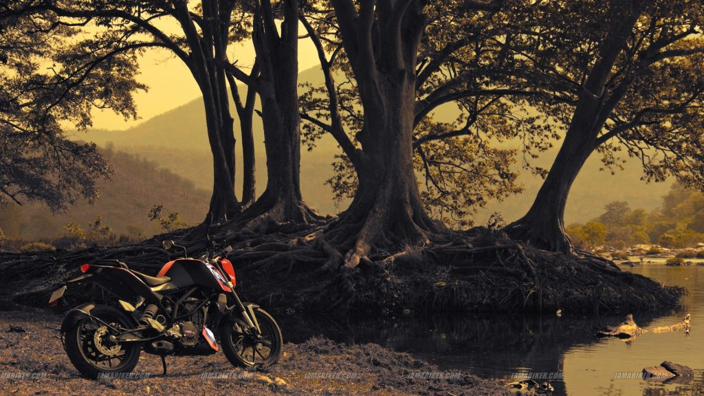 KTM Duke Wallpaper PIC MCH080568 1024x576 Bike Full Hd Wallpapers
