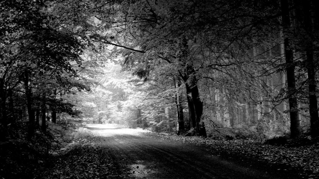 PIC-MCH011927-1024x576 Free Wallpaper Black And White Photography 19+