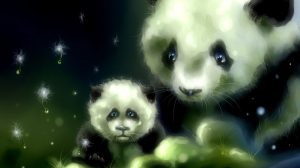 Baby Kung Fu Panda Wallpapers 20+