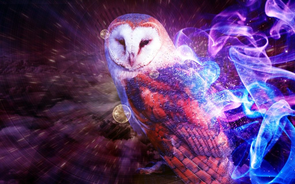 Photos-images-download-animal-owl-backgrounds-desktop-wallpapers-high-definition-monitor-download-f-PIC-MCH094697-1024x640 Sparkling Wallpapers Free 25+