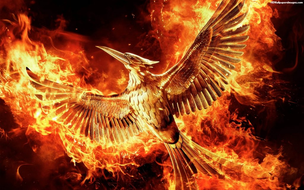 The-Hunger-Games-Mockingjay-part-Cool-HD-Movie-wallpaper-wp-PIC-MCH0106691-1024x640 Hunger Games Wallpapers Free 42+