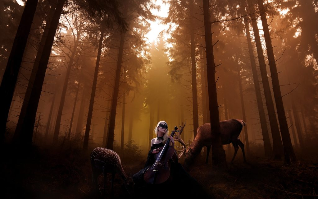 beautiful-cello-wallpapers-hd-As-Wallpaper-HD-PIC-MCH044757-1024x640 Cello Wallpaper 1080p 30+
