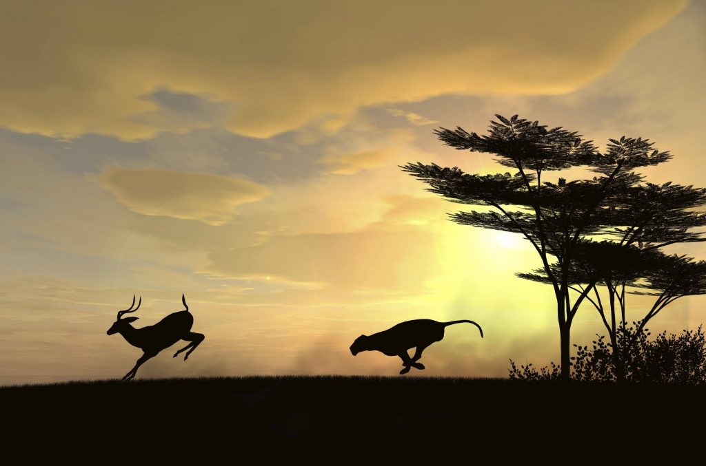 best-national-geographic-wallpaper-x-for-tablet-PIC-MCH031355-1024x677 Nat Geo Wallpaper Ipad 38+