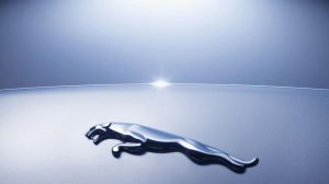 Jaguar Logo Hd Wallpapers 1080p 49+