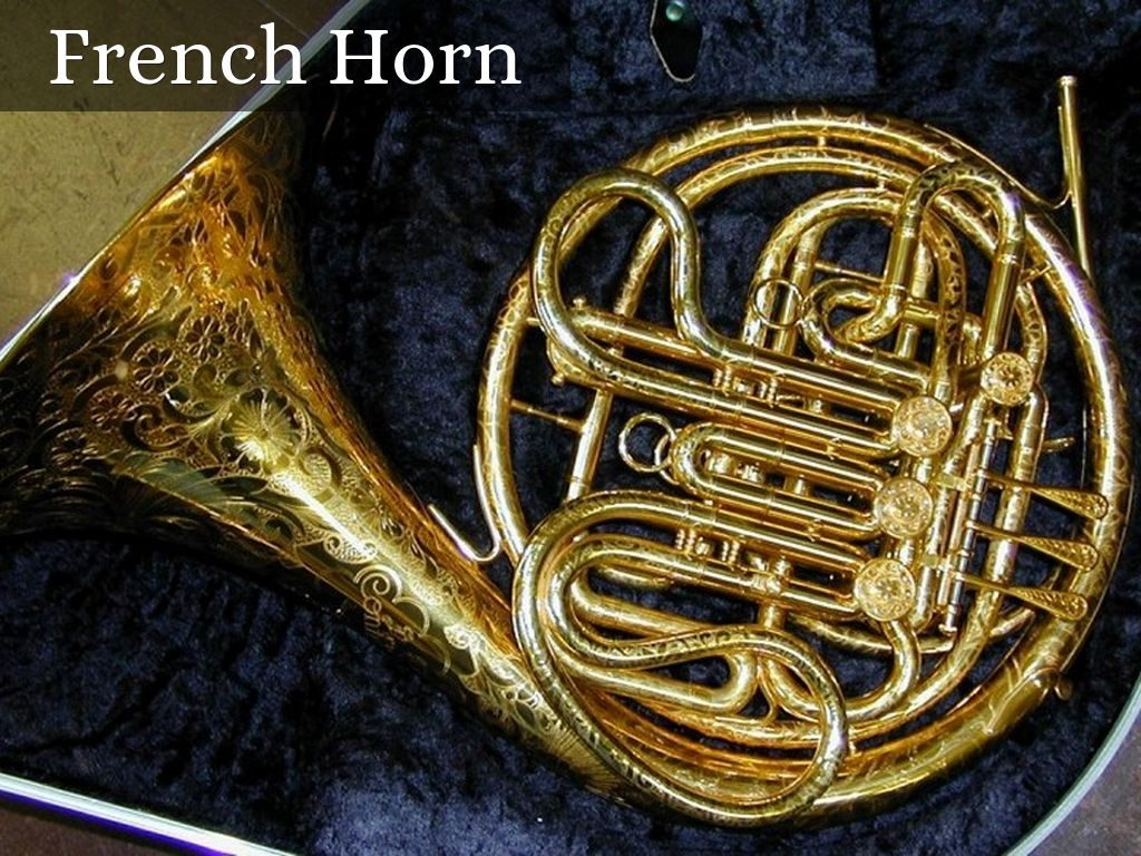 syzFgTSYm-PIC-MCH0105383-1024x768 French Horn Wallpaper Gallery 13+