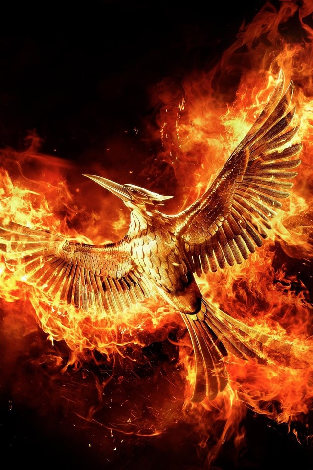 the-hunger-games-mockingjay-part-movie-x-PIC-MCH0106680 Hunger Games Wallpapers For Iphone 4 14+