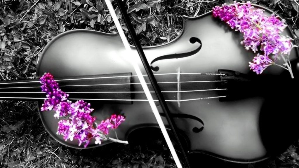violin-p-PIC-MCH0110392-1024x576 Cello Wallpaper 1080p 30+