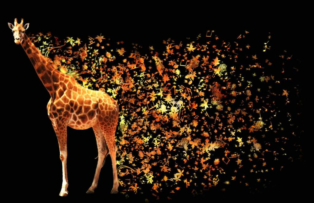 wallpaper-abstract-giraffe-PIC-MCH0111440-1024x662 Giraffe Hd Wallpapers For Pc 47+