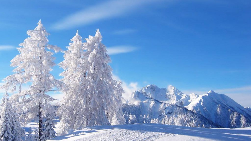 winter-trees-nature-snow-forest-wallpaper-scenes-free-download-PIC-MCH0116956-1024x576 Nat Geo Wallpaper 2016 33+