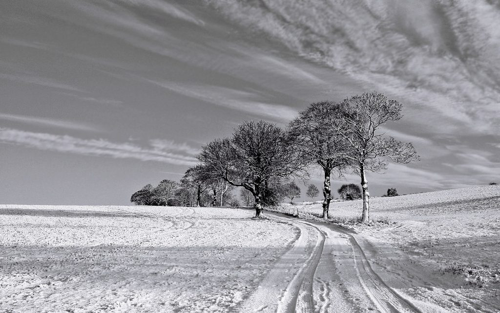 ws-Black-and-White-Winter-x-PIC-MCH0118705-1024x640 Free Wallpaper Black And White Photography 19+