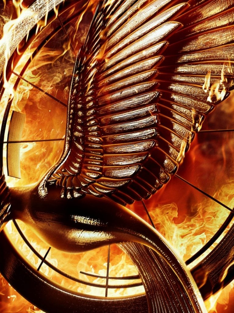 ws-The-Hunger-Games-Catching-Fire-Mockingbird-Pin-x-PIC-MCH0119616-768x1024 Hunger Games Wallpapers For Ipad 28+