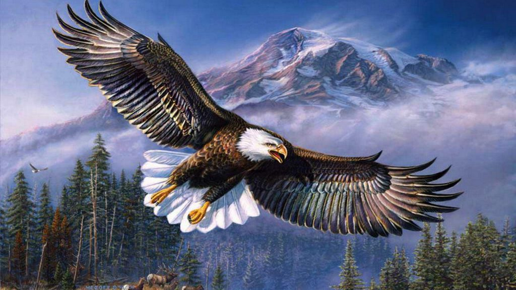 Beautiful-background-bald-eagle-in-flight-wings-spread-hd-wallpapers-for-mobile-phones-and-laptops-PIC-MCH044694-1024x576 Beautiful Eagles Wallpapers 39+