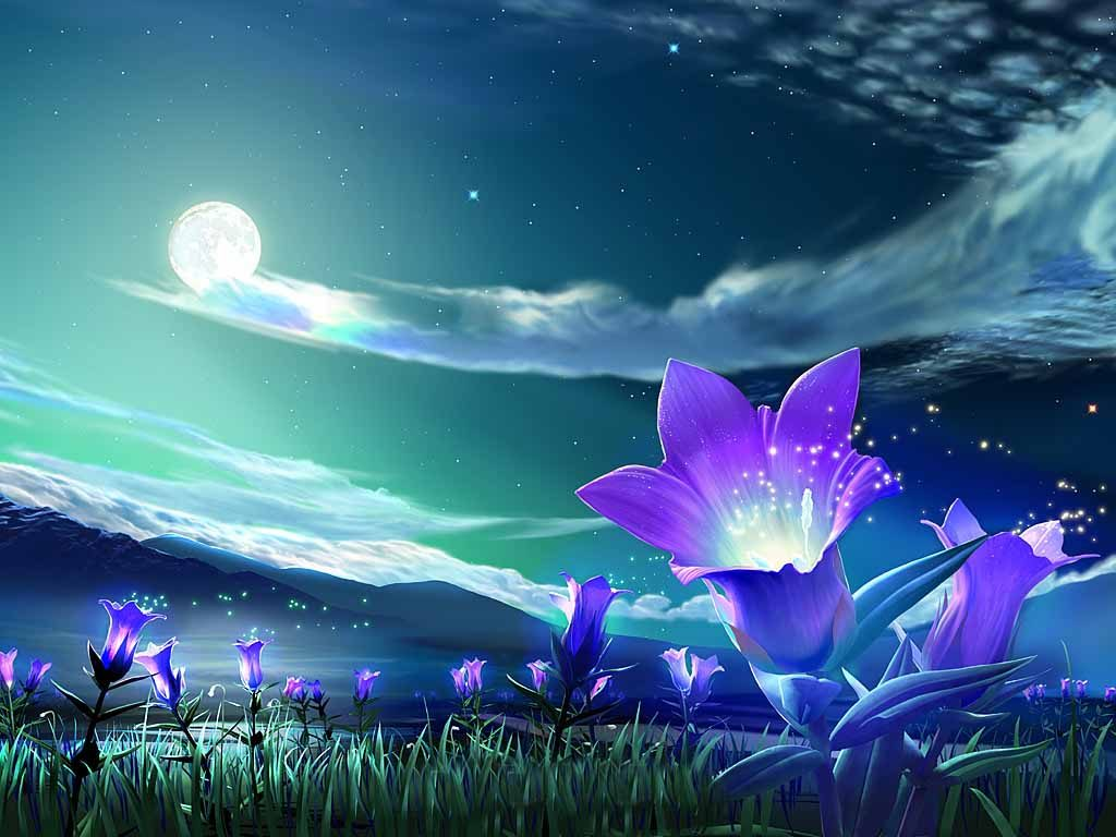 Flower-Under-Night-Sky-Wallpaper-PIC-MCH064279-1024x768 Night Sky Wallpaper Hd 44+