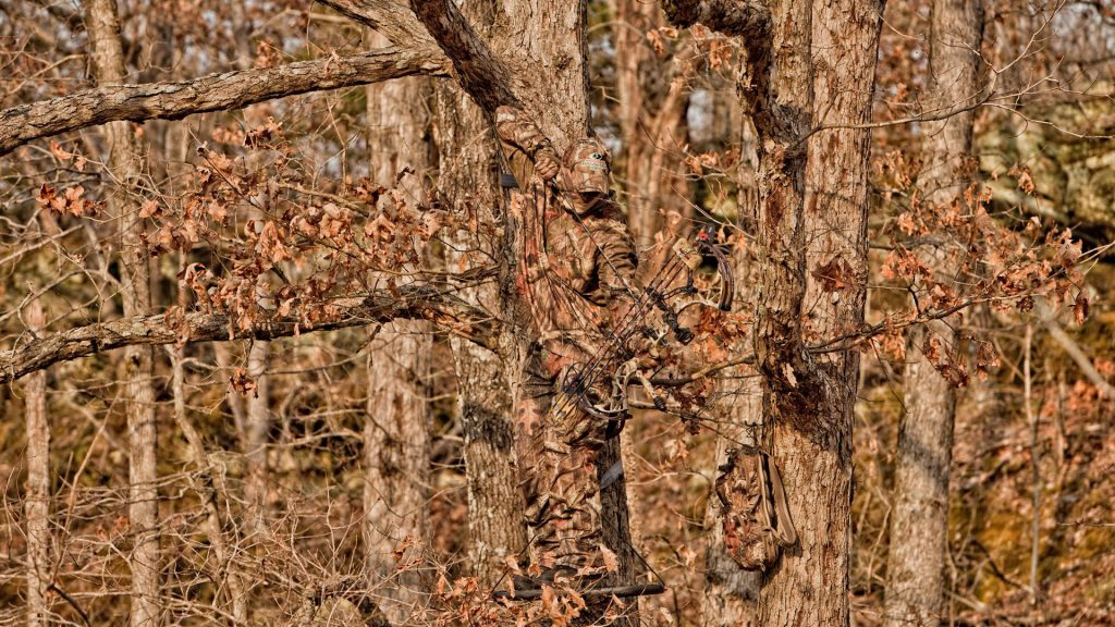 HD-Realtree-Camo-Wallpapers-Free-PIC-MCH072261-1024x576 Realtree Wallpaper Android 24+