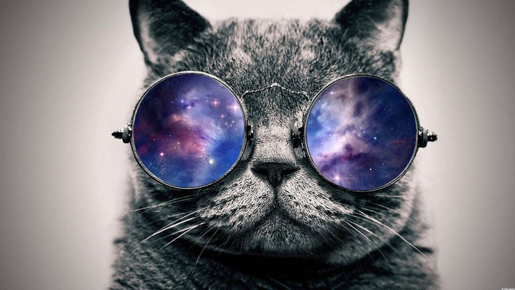 Hipster-Cat-Wallpaper-On-Wallpaper-Hd-PIC-MCH073222-1024x576 Hipster Cat Wallpaper Hd 36+