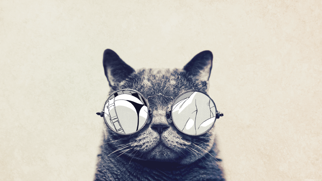 Hipster-Cat-Wallpaper-On-Wallpaper-Hd-PIC-MCH073229-1024x576 Hipster Cat Wallpaper Hd 36+