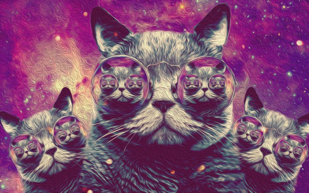 OvXg-PIC-MCH033857-1024x640 Hipster Cat Wallpaper Tumblr 23+