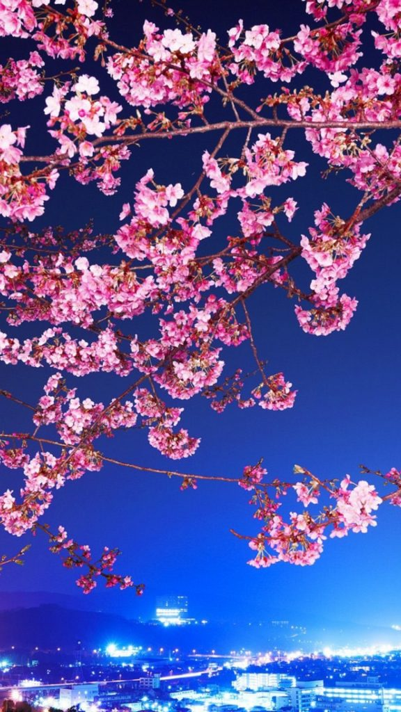 PIC-MCH031686-576x1024 Blossom Wallpaper Hd 36+