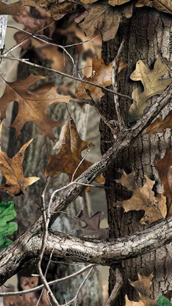 VhxYm-PIC-MCH031642-577x1024 Realtree Wallpaper Iphone 22+