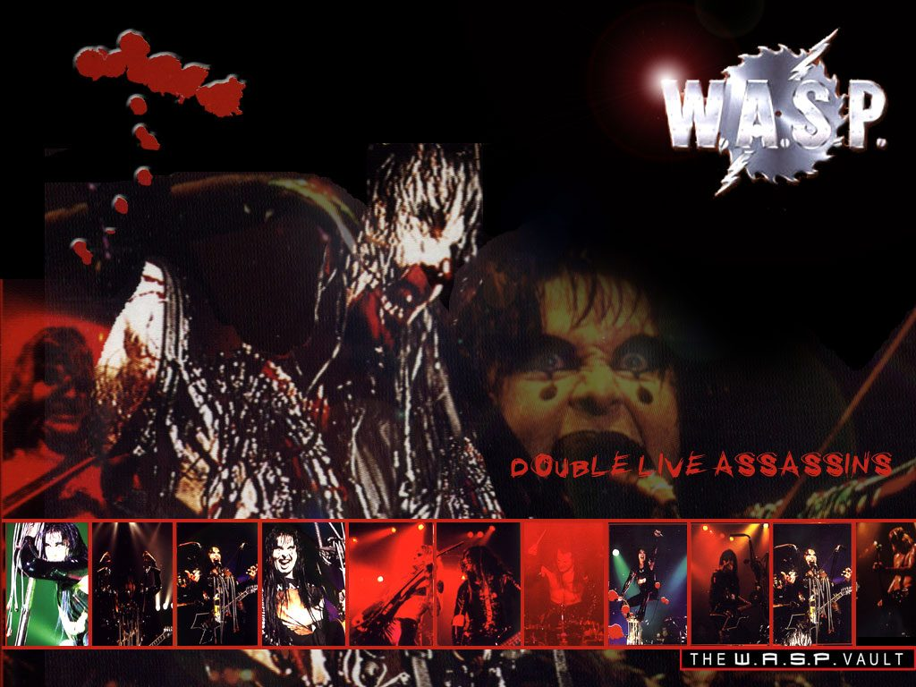 W.A.S.P-wallpaper-PIC-MCH0110843-1024x768 Mew Wallpaper Band 36+