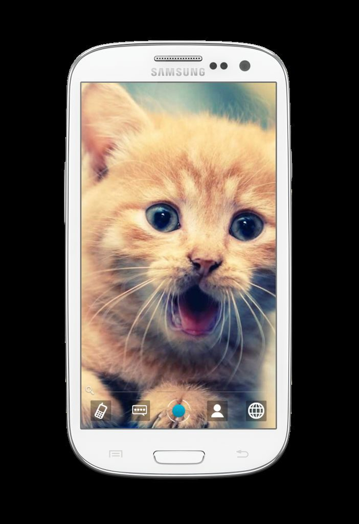 aaccbaeefd-small-PIC-MCH07500-702x1024 Hd Cat Wallpapers For Android 29+