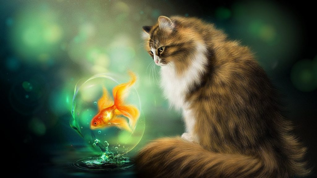 cats-fantasy-fish-painting-art-animals-photos-wild-cat-x-PIC-MCH051621-1024x576 Hd Cat Wallpapers For Android 29+