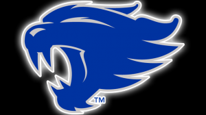 Kentucky Wildcat Wallpaper Free 13+