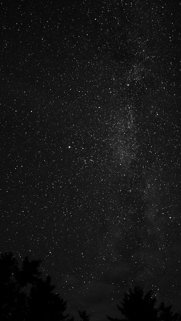 papers.co-na-night-sky-milkyway-tree-wood-nature-bw-dark-wallpaper-PIC-MCH093606-577x1024 Night Sky Wallpaper Iphone 44+