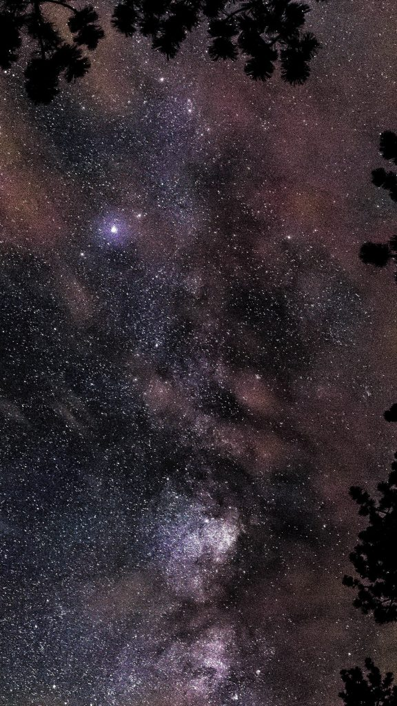 space-star-night-sky-fall-nature-wood-iphone-plus-wallpaper-PIC-MCH0103216-576x1024 Night Sky Wallpaper Iphone 7 36+