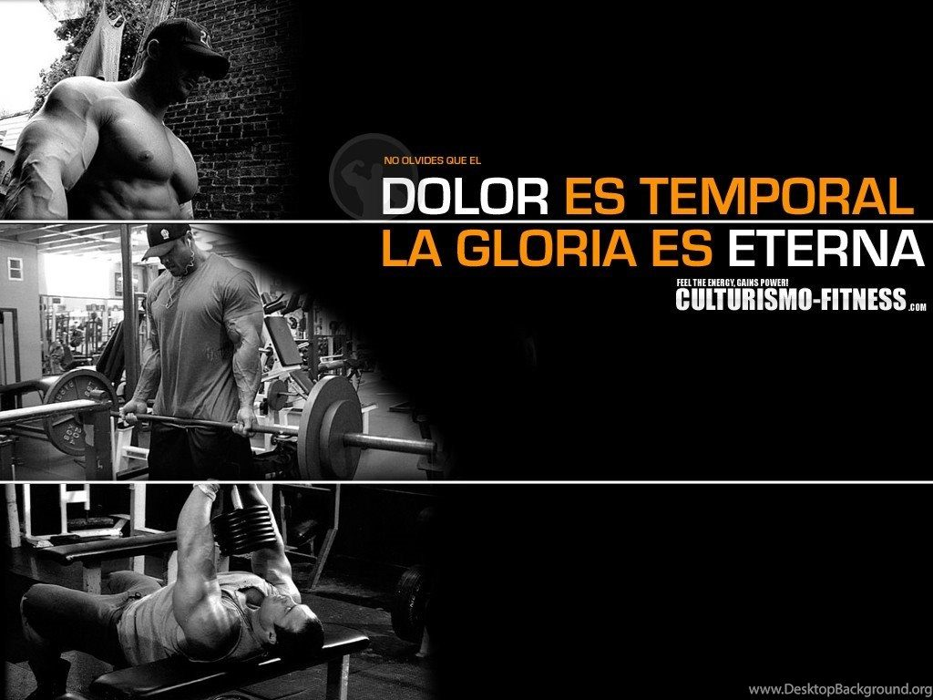 wallpapers-gym-fitness-de-culturismo-foros-ejercicios-rutinas-with-x-h-PIC-MCH031205-1024x768 Gym Wallpapers Desktop 28+