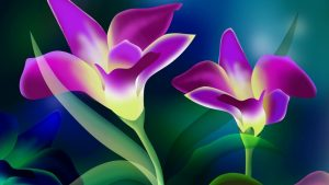 Amazing Flower Wallpapers Hd 26+