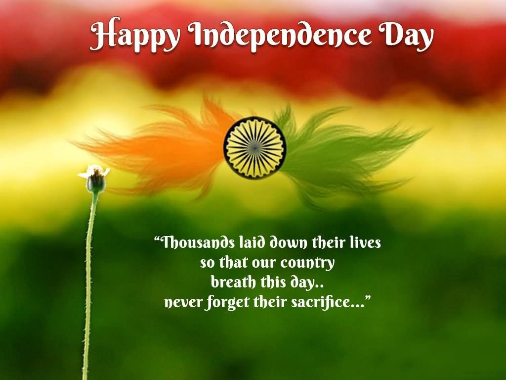 Happy-Independence-Day-Thousands-Laid-Down-Their-Lives-So-That-Our-Country-Breath-This-Day-Never-Fo-PIC-MCH070974-1024x768 Beautiful Indian Flag Wallpaper 32+