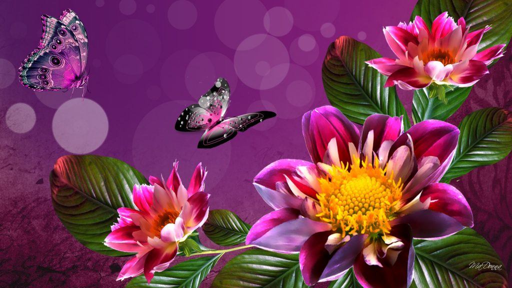 PIC-MCH03471-1024x576 Amazing Flower Wallpapers Hd 26+