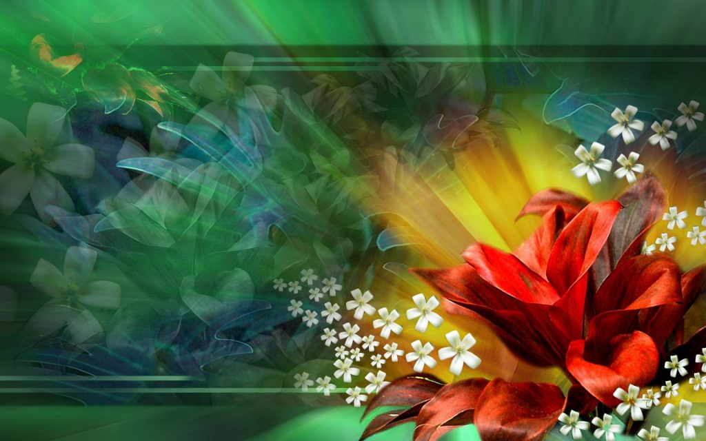 PIC-MCH04623-1024x640 Amazing Flower Wallpapers Hd 26+