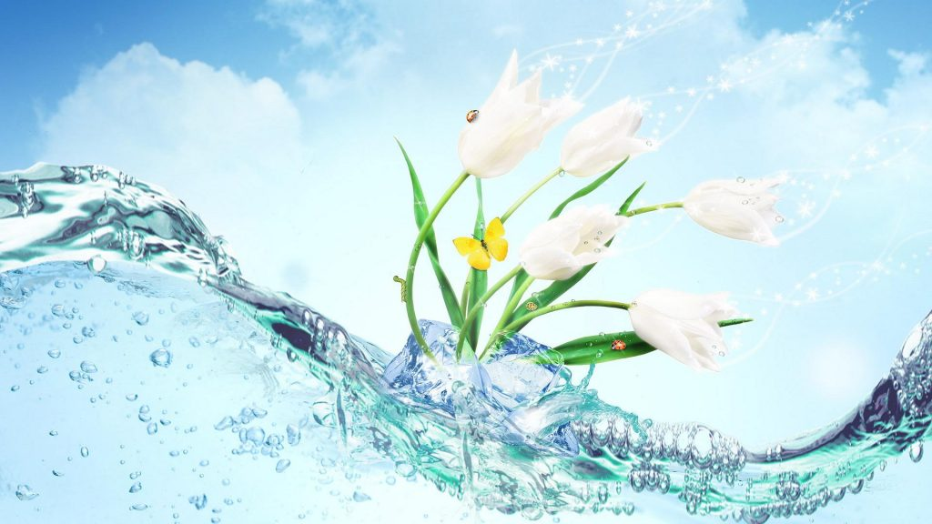beautiful-flower-wallpaper-PIC-MCH044830-1024x576 Pretty Flower Wallpapers For Android 24+