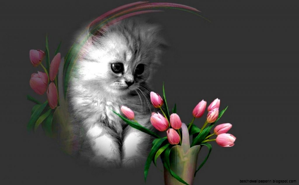 cat-cute-cat-sleeping-wallpaper-with-flowers-for-mobile-phones-PIC-MCH051516-1024x633 Beautiful Wallpapers Free For Mobile 28+