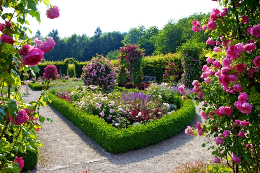 garden-hd-graceful-on-garden-together-with-beautiful-flower-and-lawn-ideas-flowers-wallpaper-PIC-MCH067832-1024x683 Gallery Wallpaper Hd 28+
