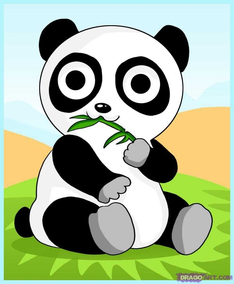 how-to-draw-a-cartoon-panda-bear-step-by-step-anime-animals-on-images-of-cartoon-pandas-PIC-MCH073913 Animated Panda Bear Wallpaper 27+