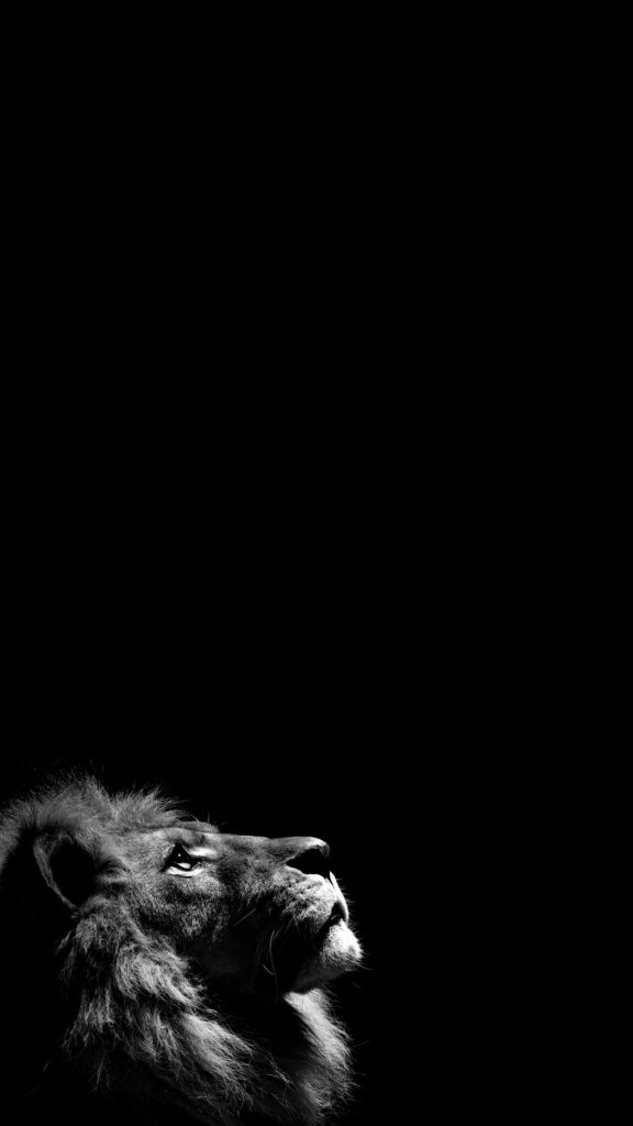 lion-iphone-x-PIC-MCH082489-576x1024 Black And White Iphone Wallpaper Hd 54+
