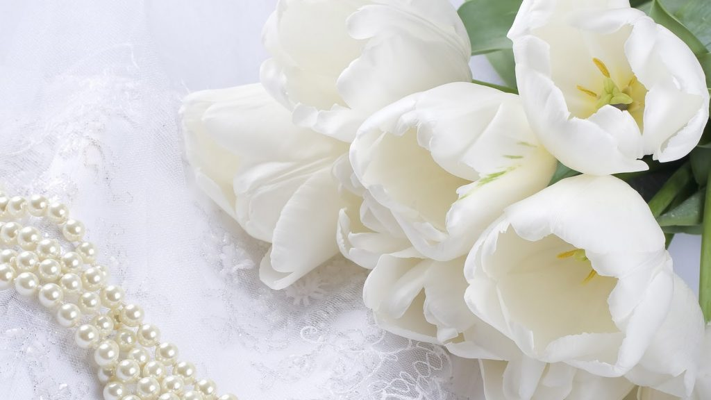 most-beautiful-hd-free-wallpapers-white-rose-PIC-MCH087438-1024x576 Amazing Flower Wallpapers Hd 26+